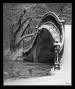 Elizabeth Park Trenton Photograph - Winters Wonders 2005 II by Angeys Photography