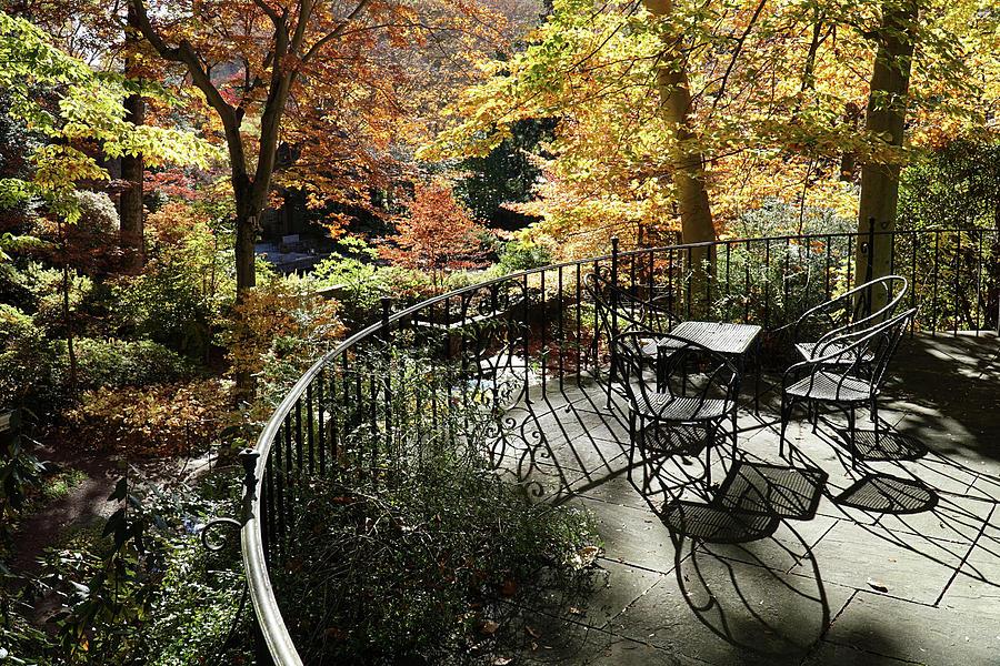 Winterthur Gardens #08559 by Raymond Magnani