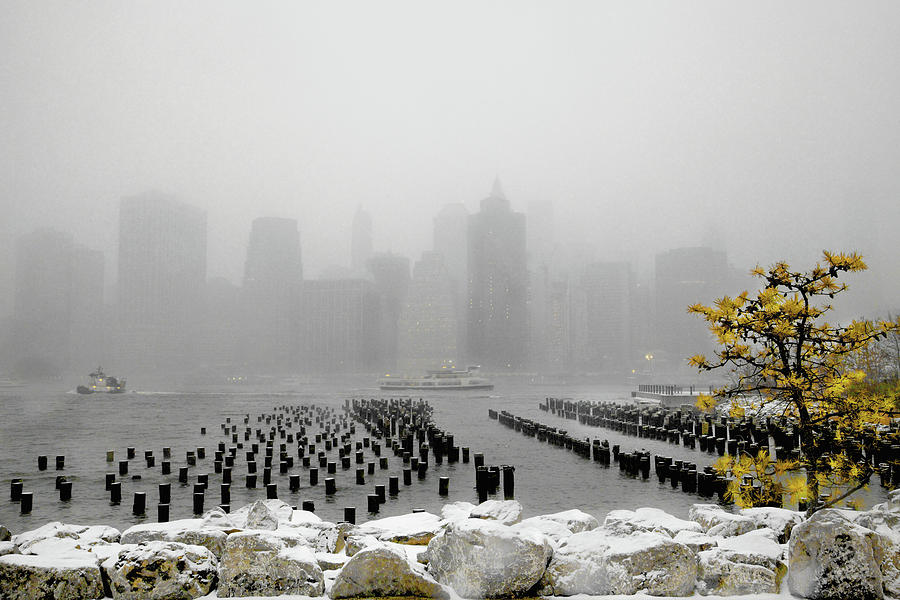 Wintry Lower Manhattan by Steve and Sharon Smith