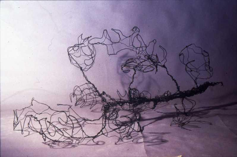 Wire Sculpture - Wire Leaf Sculpture by Devin Moore