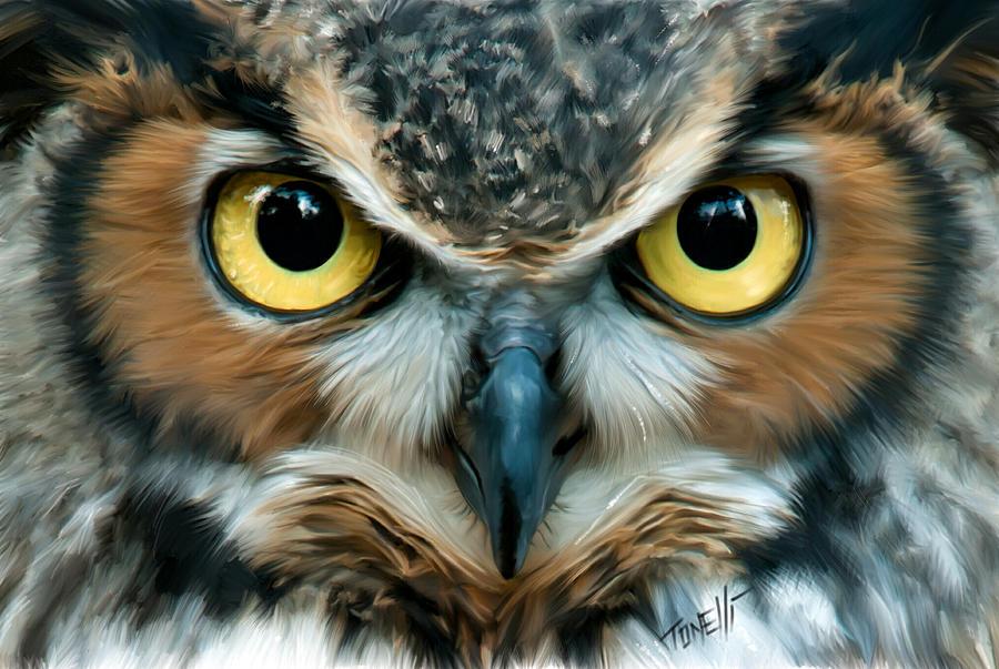 Night Owl, Wisdom Mixed Media