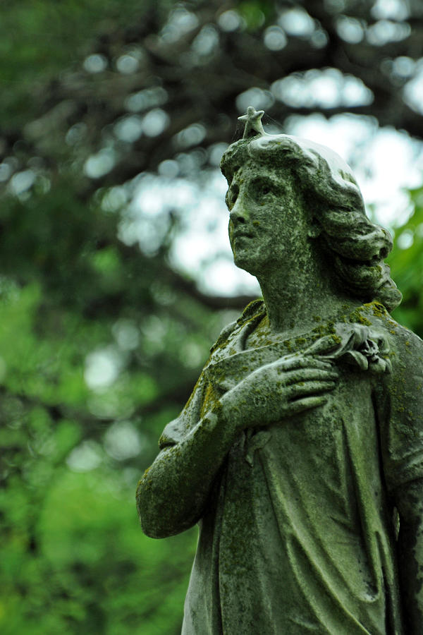 Cemetery Photograph - Wish Upon A Stardust by Rebecca Sherman