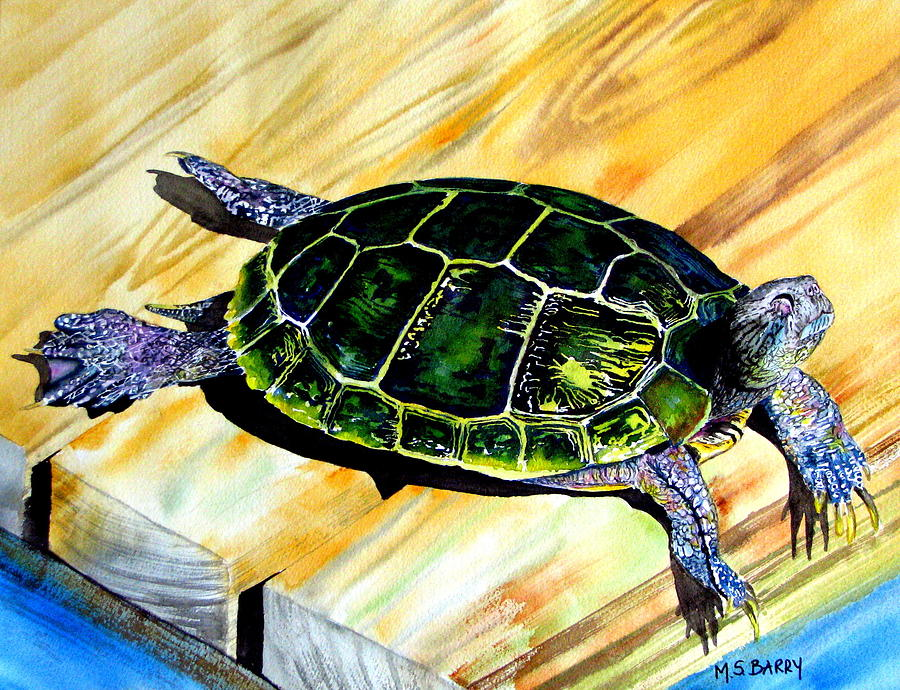 Turtle Painting - Wish You Were Here by Maria Barry