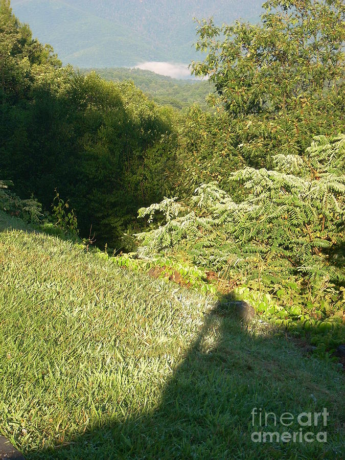 Dew Photograph - Wish you were here with us in the mountains by Beebe  Barksdale-Bruner