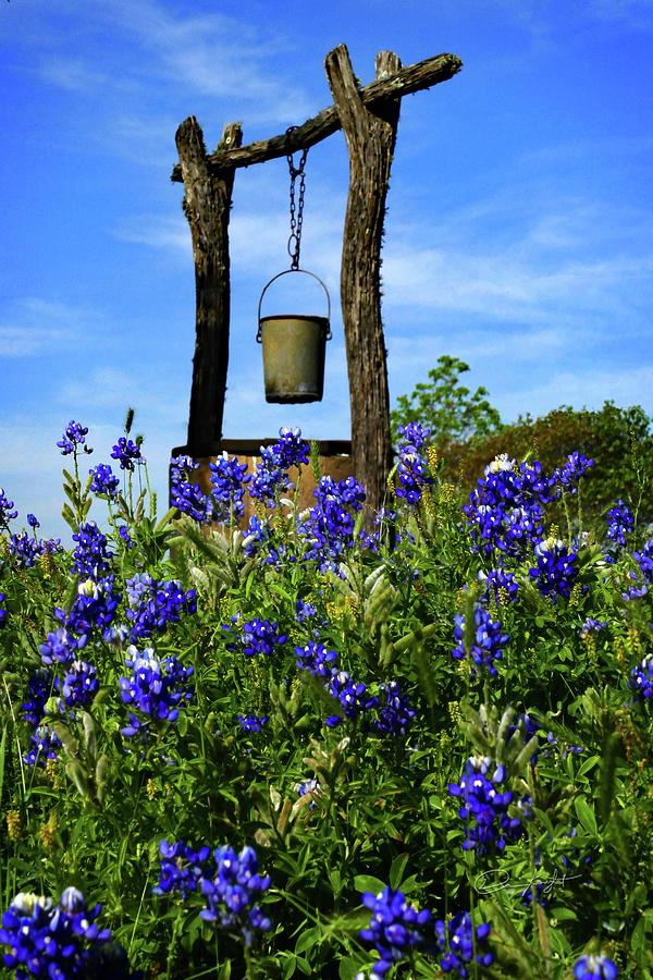 Landscape Photograph - Wishing Well by Elijah Knight