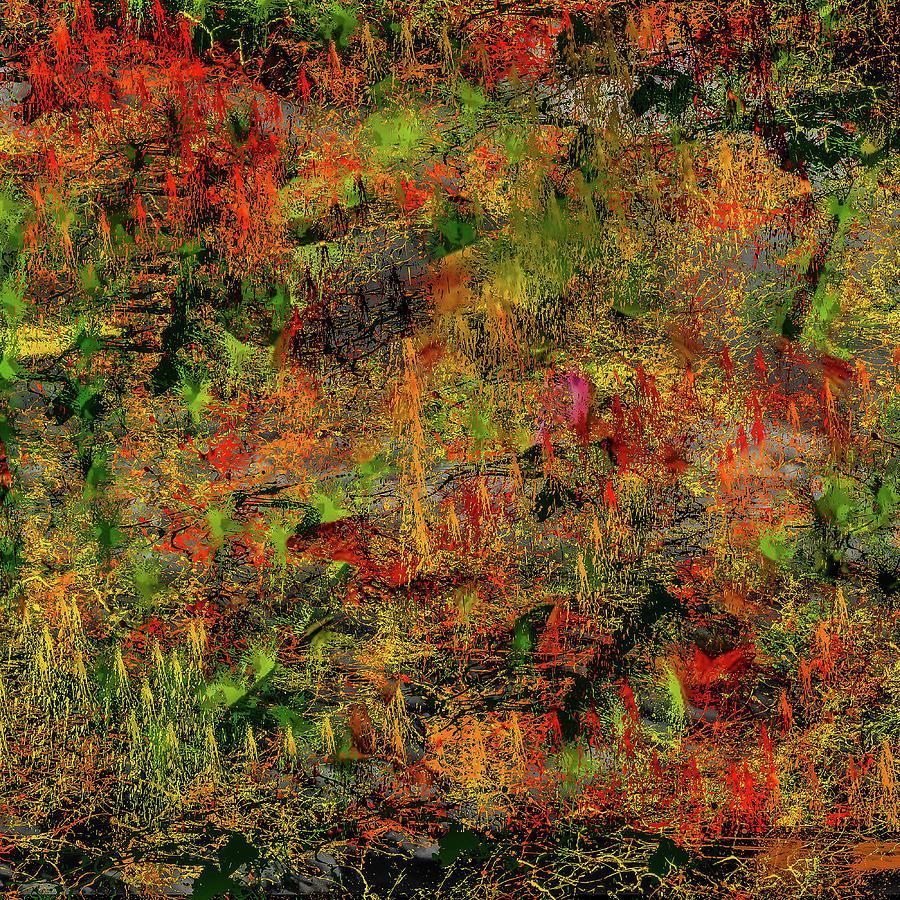 Popular Digital Art - Wisps Of Autumn by Mac Titmus