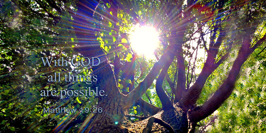 With God all things are possible Two by Morgan Carter