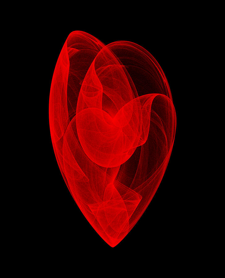 Strange Attractor Digital Art - Within Shell II by Robert Krawczyk