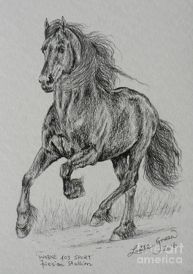 Friesian Drawing - Wobke 403 Sport Friesian by Louise Green