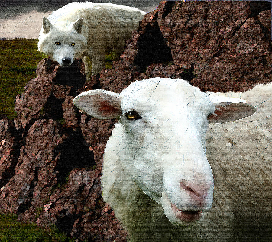 Wolf and Sheep Digital Art by Kerry Gavin