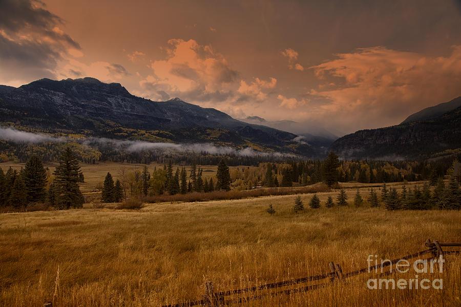 Colorado Photograph - Wolf Creek Pass by Timothy Johnson
