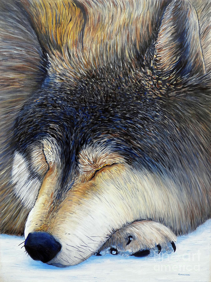 Wolf Painting - Wolf Dreams by Brian  Commerford