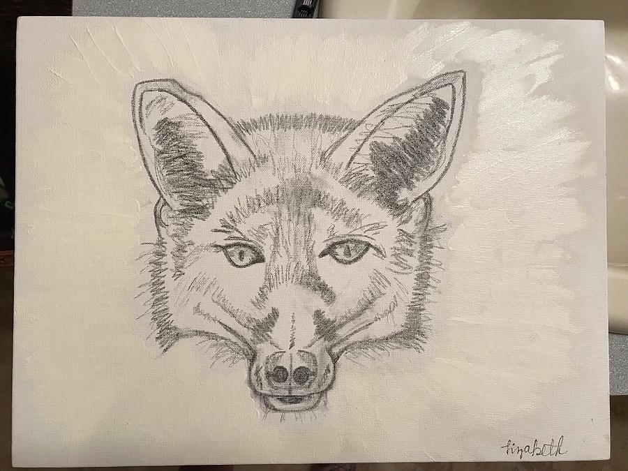 Wolf Drawing by Elizabeth Hodges