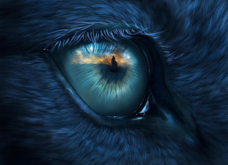 Wolf Eye Digital Art By Bernadett Kovacs