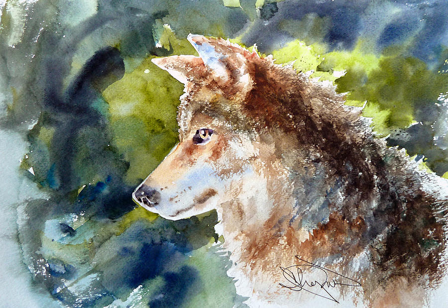 Wolf Drawing - Wolf by H Lee Shapiro