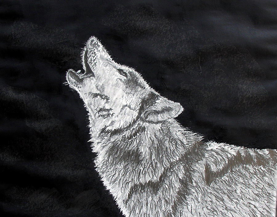 Black Wolf Howling Drawing Wolf Howl Drawi...