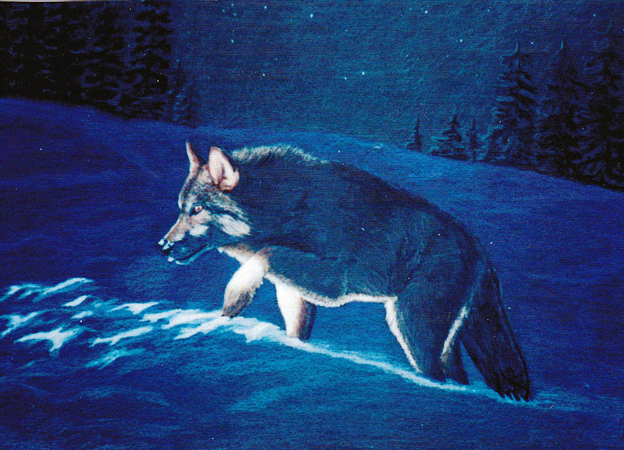 Wolf Painting - Wolf In The Headlights by Lorraine Foster