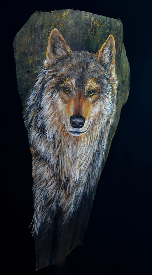 Wolf in the Woods by Nancy Lauby