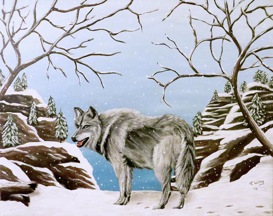 Wolf in Winter by Teresa Wing