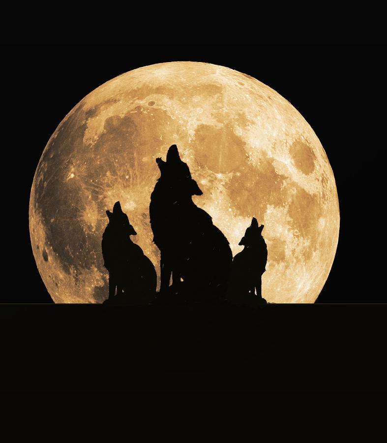 Картинки с полной луной и волком, крутые