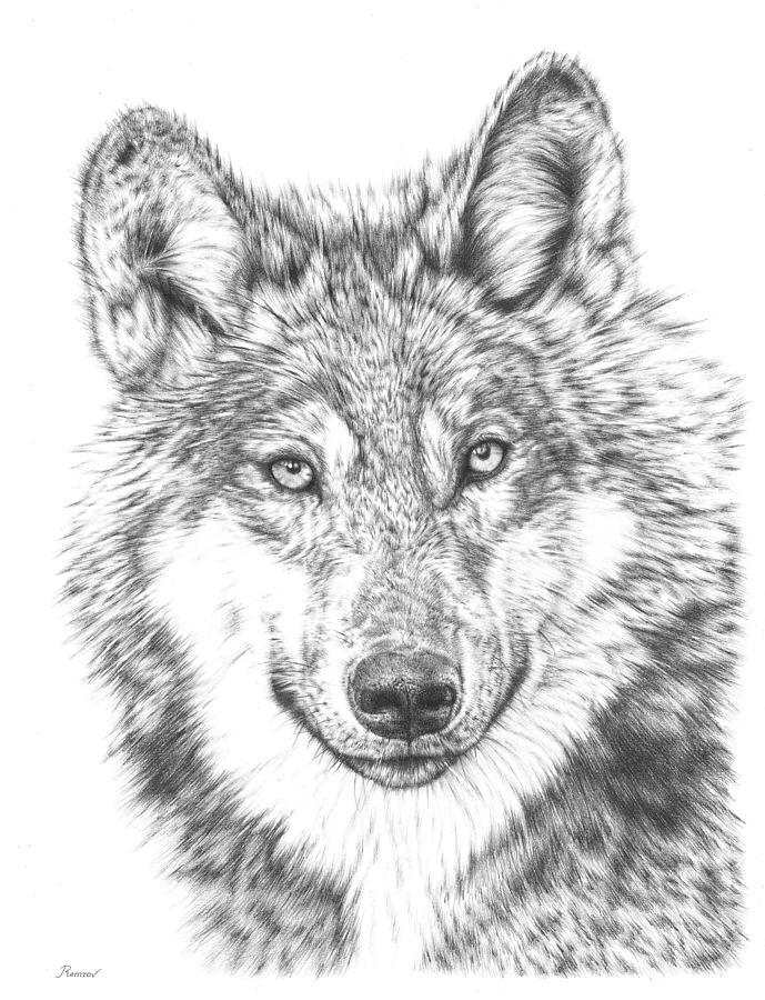 Wolf by Remrov