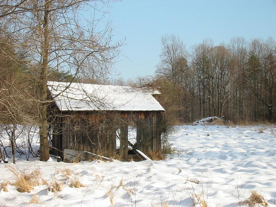 Wolf Run Snow Shed by Lin Grosvenor
