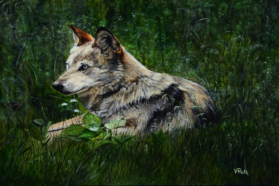 Wolf Painting - Wolf by Vicky Path