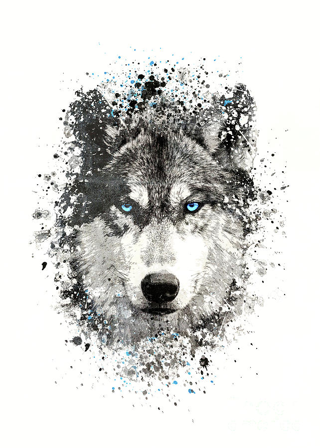 Black Wolf With Blue Eyes Drawing