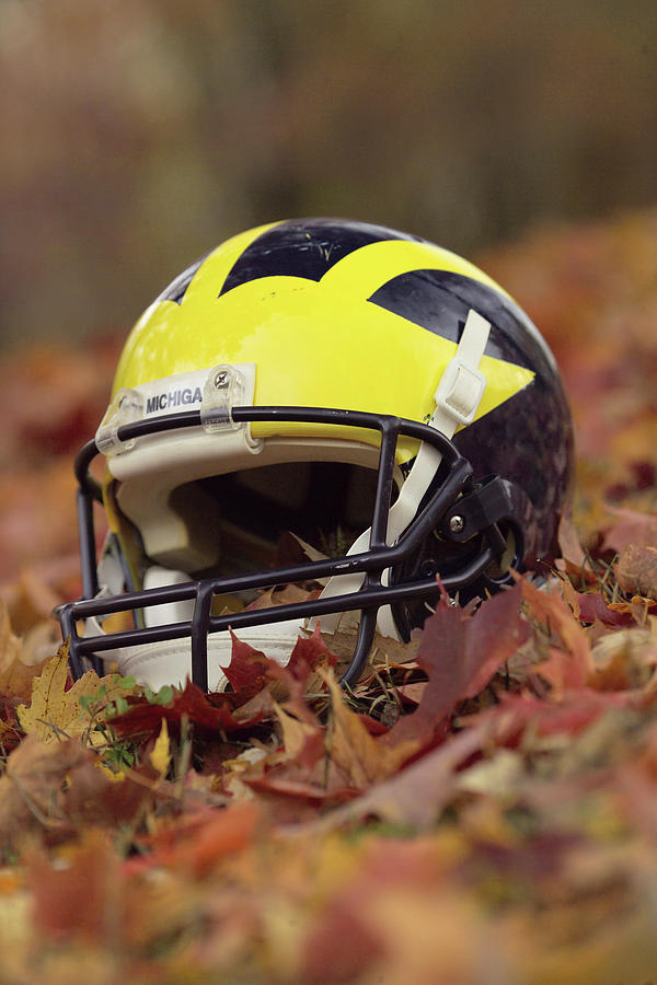 Wolverine Helmet in October Leaves by Michigan Helmet