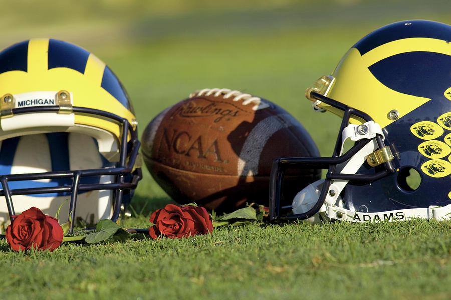 Wolverine Helmets and Roses by Michigan Helmet