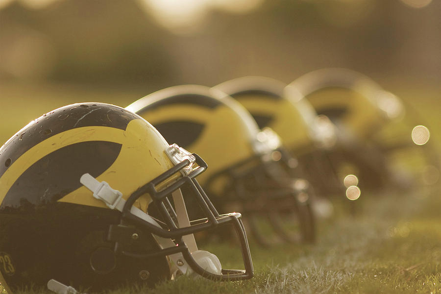 Wolverine Helmets Sparkling in Dawn Sunlight by Michigan Helmet