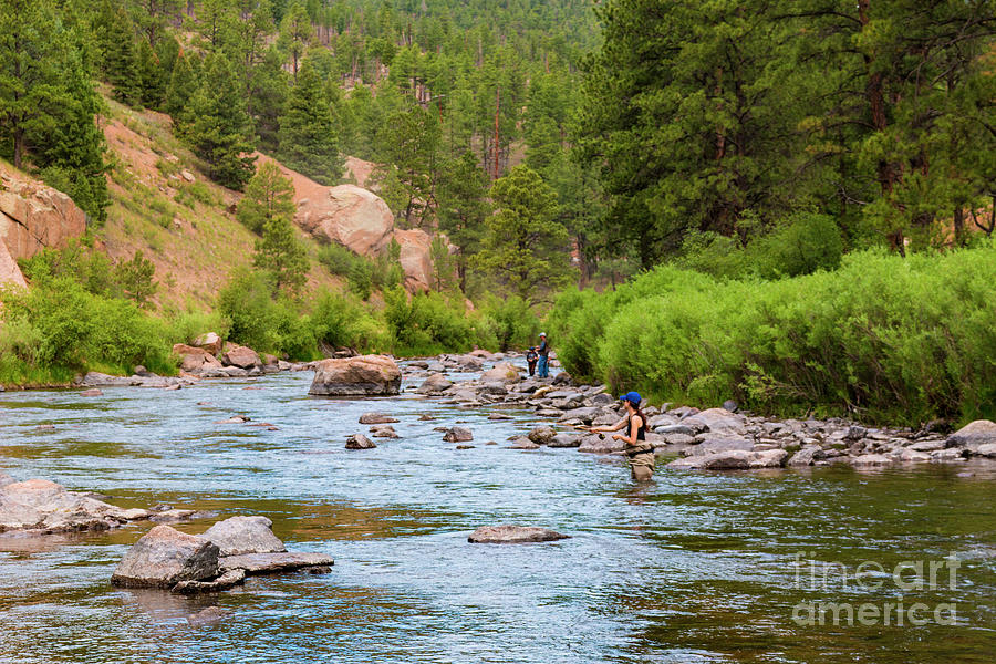 Woman Fly Fishing On The Platte Photograph