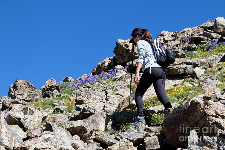 Woman Hiking The Mount Massive Summit Photograph