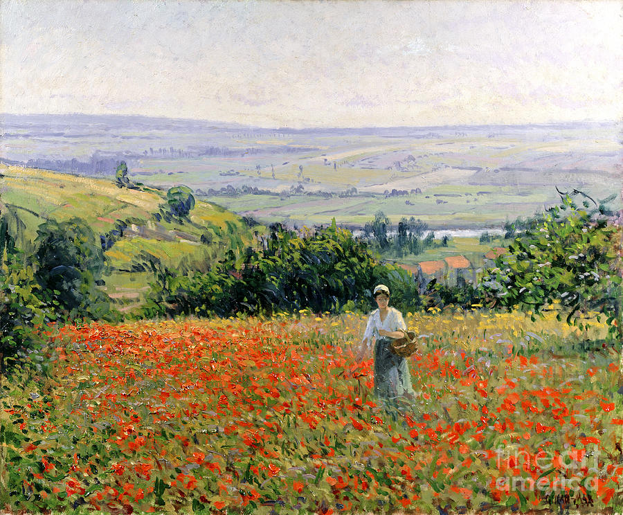 Leon Painting - Woman In A Poppy Field by Leon Giran Max
