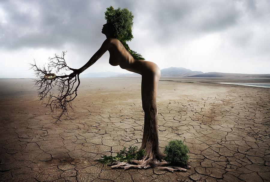 Woman Digital Art - Woman Tree Art by Lynda Art
