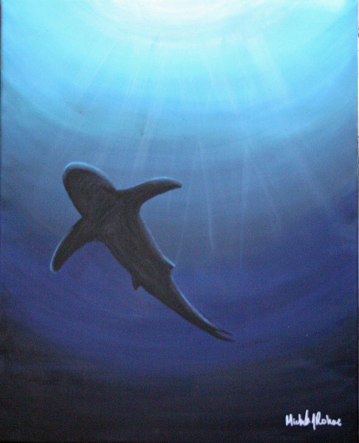 Sea Life Painting - Wonder Circling Above by Michele Rohac