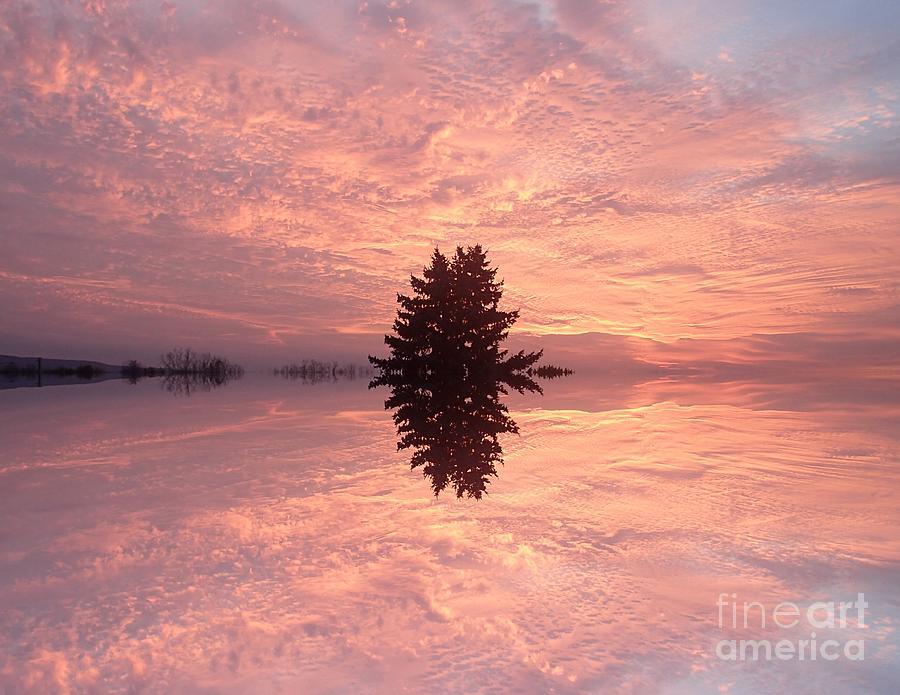 wondrous clouds       by Christina Verdgeline