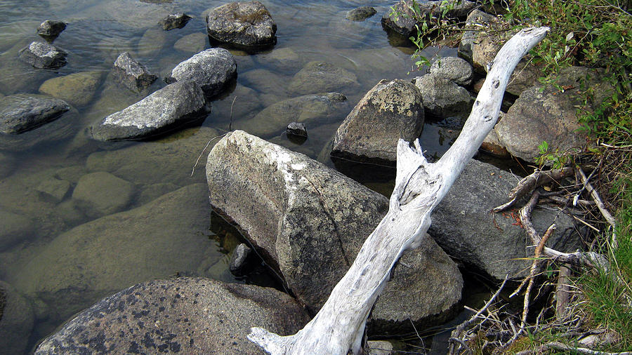 Rocks Photograph - Wood and Rocks in Water by Emma Frost