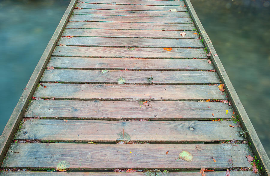 Wood And Water IIi Photograph