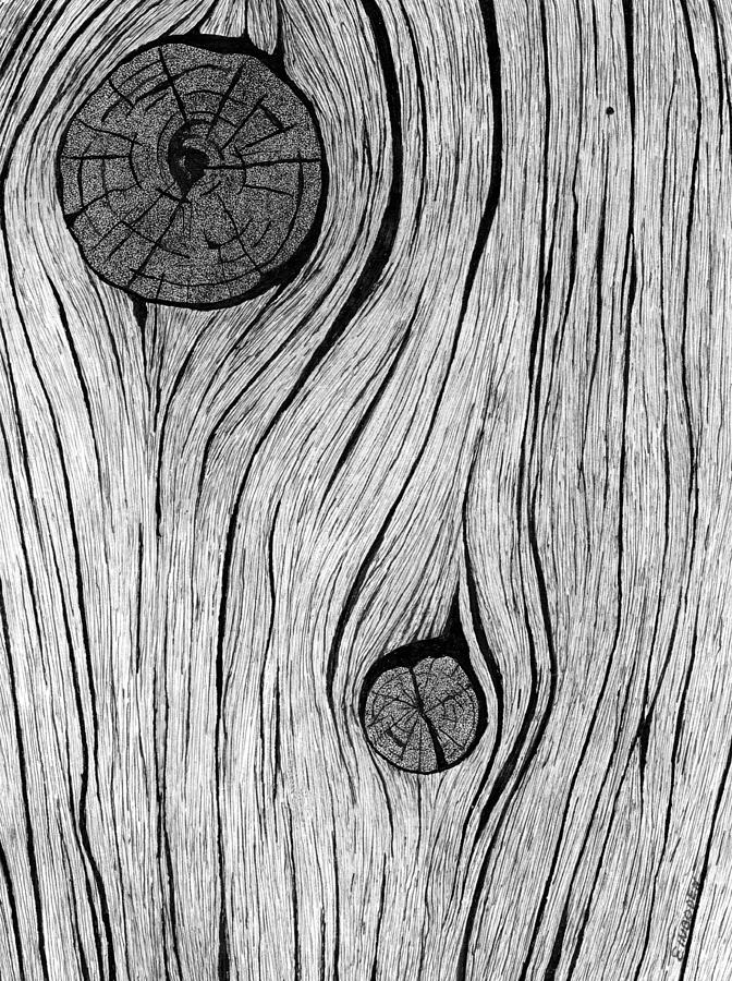 Wood grain 2 Drawing by Ed Einboden