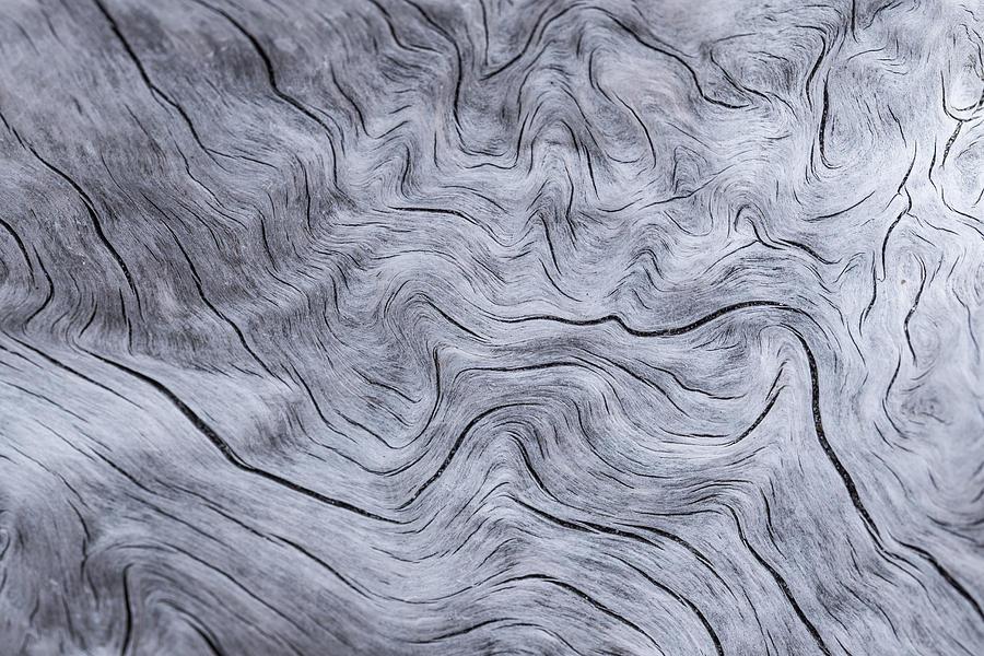 Abstract Photograph - Wood Grain by Jakub Sisak