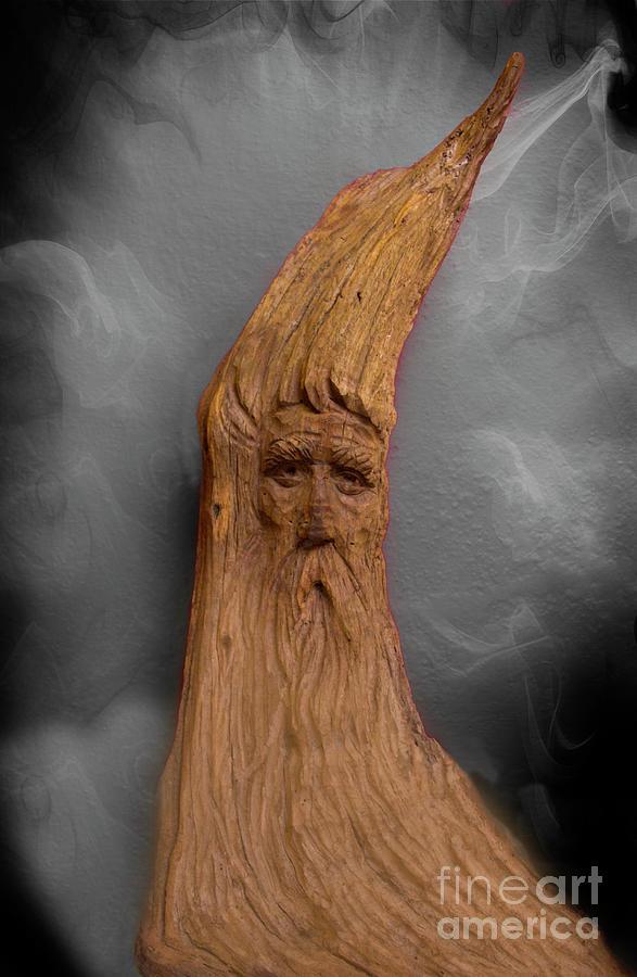 Wood Photograph - Wood Nymph II by Al Bourassa