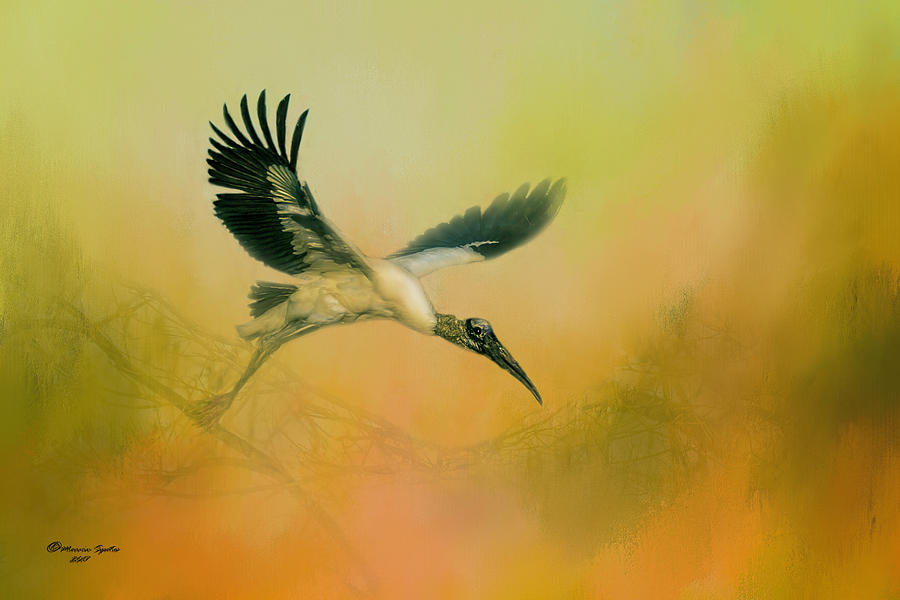 Birds Photograph - Wood Stork Encounter by Marvin Spates