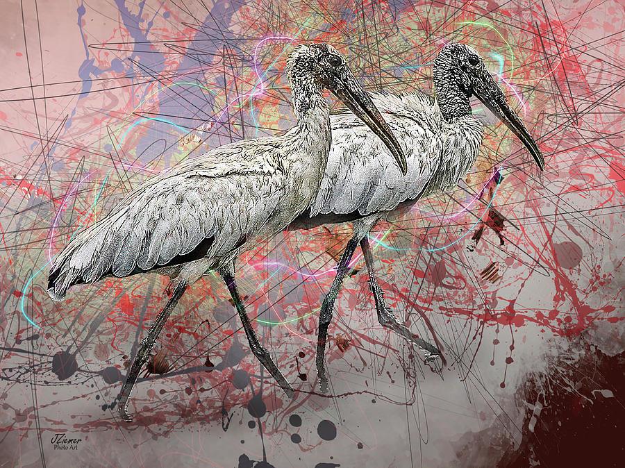 Birds Photograph - Wood Storks by Jim Ziemer