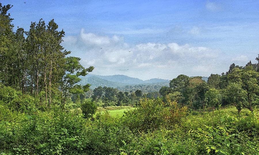 Forest Digital Art - Wooded Landscape by Sandeep Gangadharan