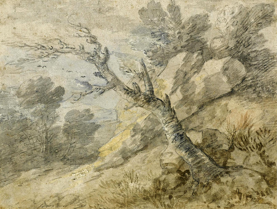 Thomas Gainsborough Drawing - Wooded Landscape With Rocks And Tree Stump by Thomas Gainsborough