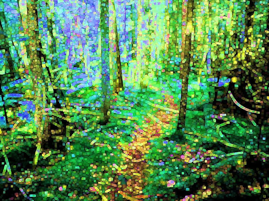 Nature Digital Art - Wooded Trail by Dave Martsolf