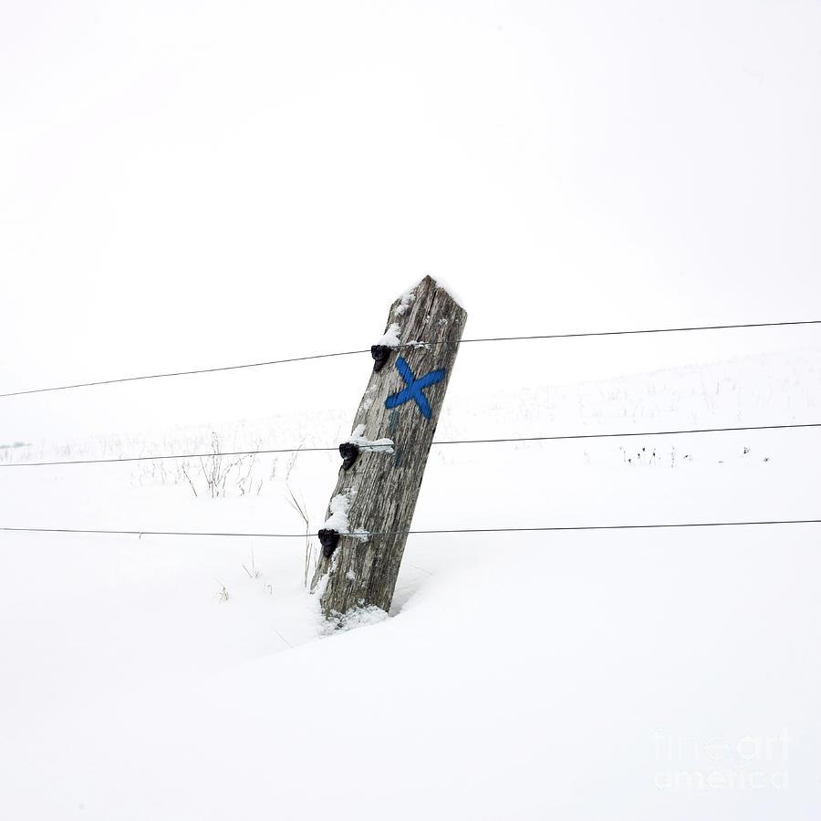 Hiver Photograph - Wooden Post In Winter by Bernard Jaubert