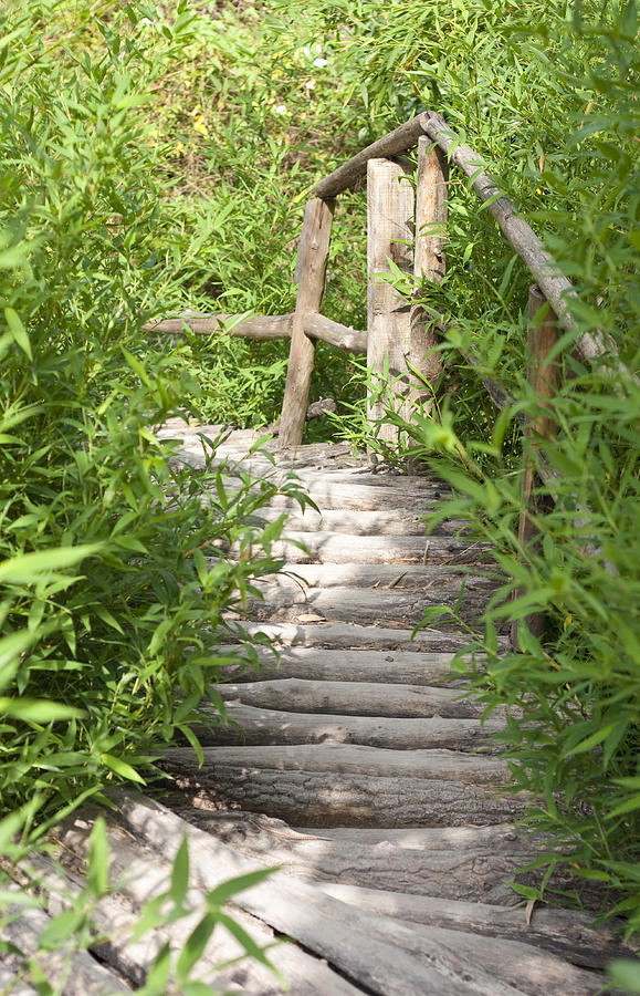 Adventure Photograph - Wooden Stairs by Boyan Dimitrov