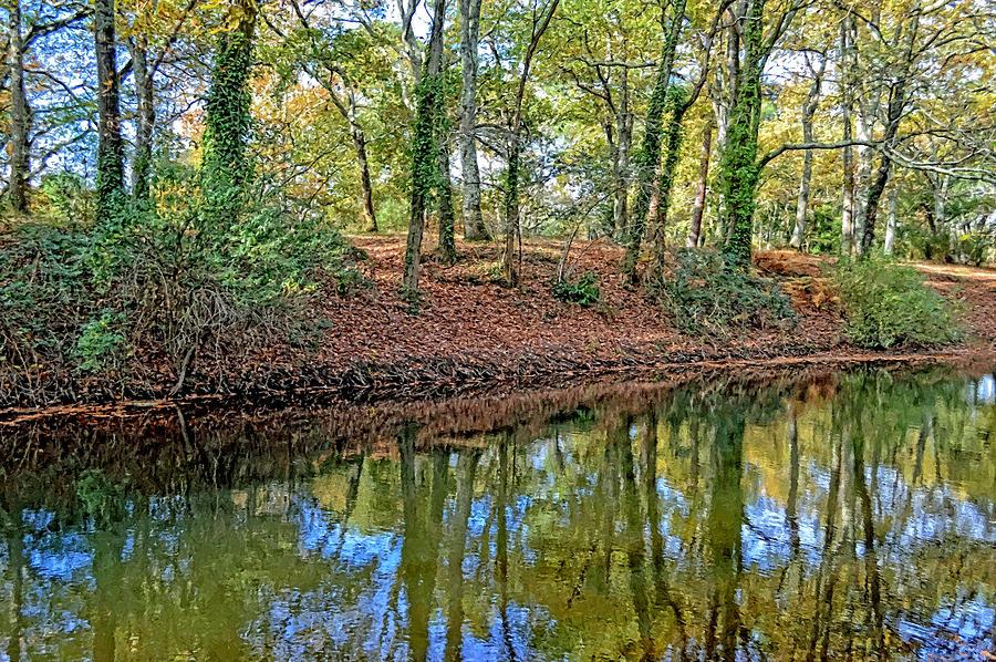 Woodland Photograph - Woodland Canal 2 by Bishopston Fine Art